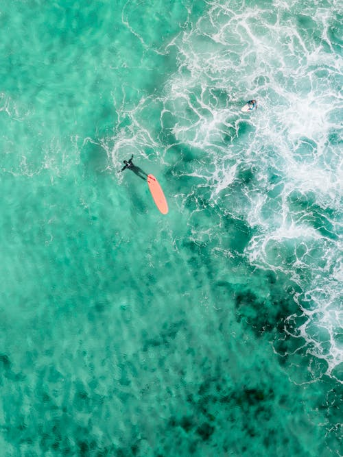 Drone view of faceless surfer in wetsuit swimming near longboard in vibrant turquoise lagoon in sunlight