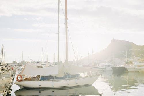 Imagine de stoc gratuită din ambarcațiune, ambarcațiuni cu vele, andocat