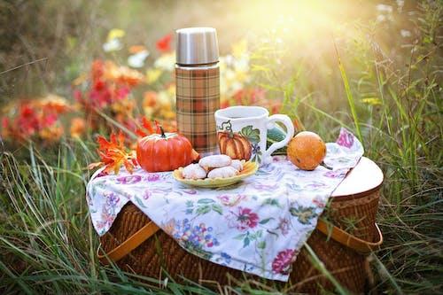 Immagine gratuita di apple, autunno, bevanda, bicchiere