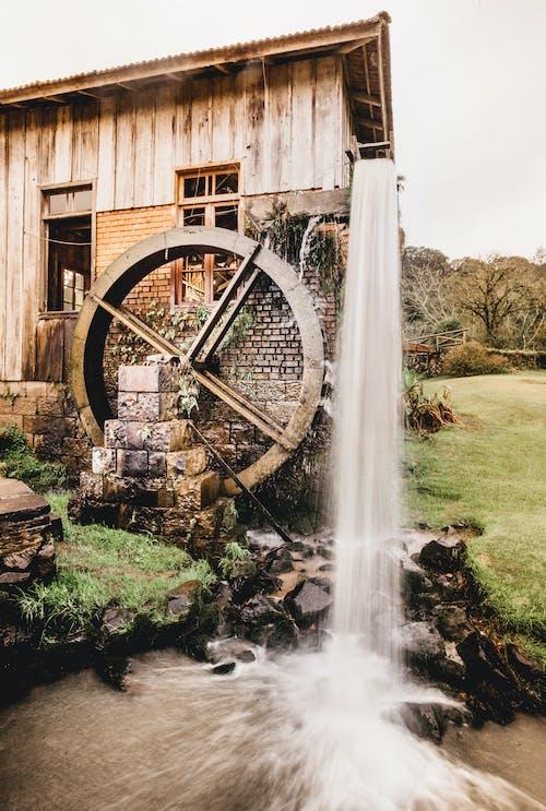 Foto profissional grátis de água, ao ar livre, arquitetura, árvore