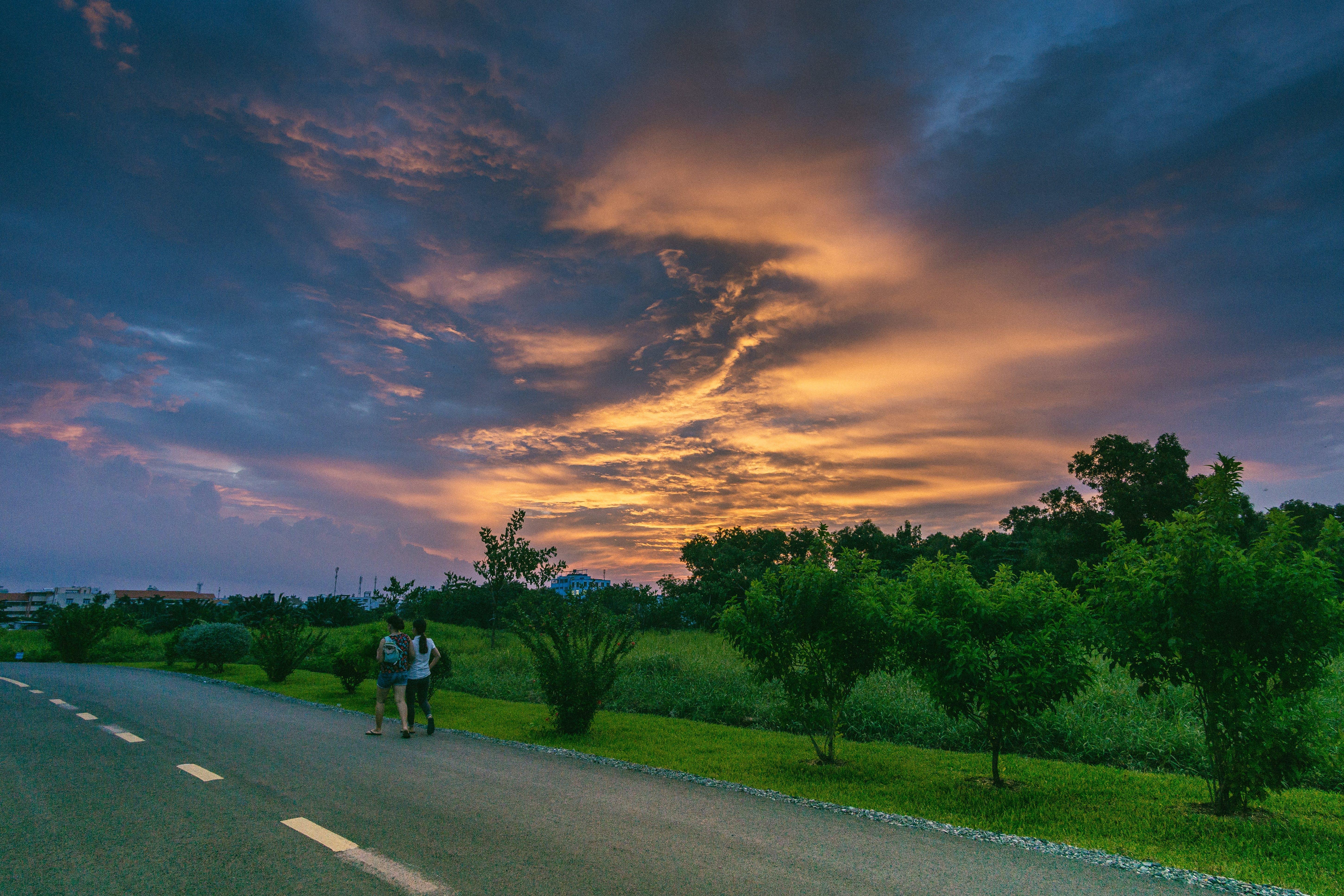 Two Person Walking on Road Beside Grass Field