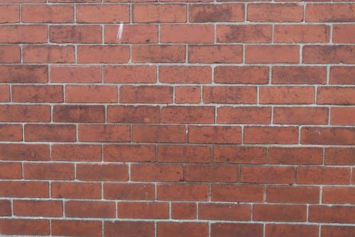 Free stock photo of brick, brick background, brick wall