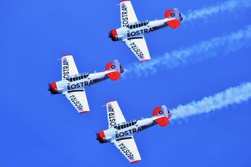 Fotos de stock gratuitas de aviación, espectáculo aéreo, espectáculo aeroacrobacia, vuelo