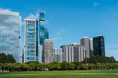 Exterior of modern glass skyscrapers built near lush city park under cloudless blue sky
