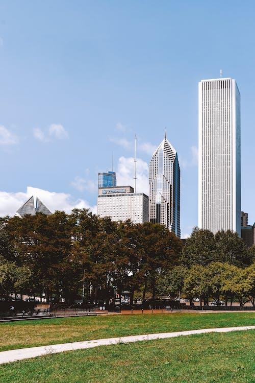 Taman Kota Hijau Yang Terletak Di Bawah Gedung Pencakar Langit Modern