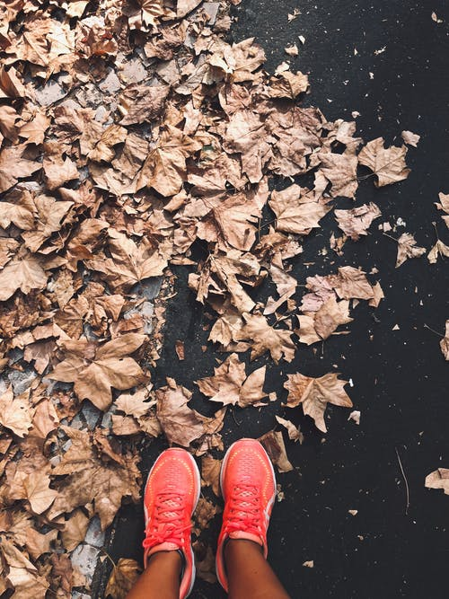 Imagine de stoc gratuită din aleargă, alergător, cădere, culoarea toamnei