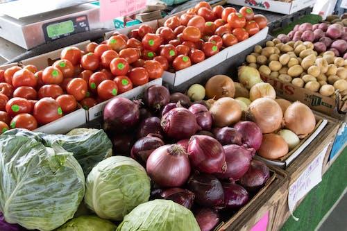 agbiopix, Çiftçi marketi, çiftçi pazarı, domates içeren Ücretsiz stok fotoğraf