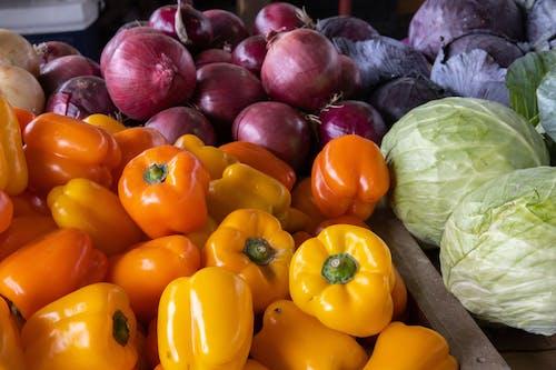 Бесплатное стоковое фото с agbiopix, апельсин, капуста, овощ