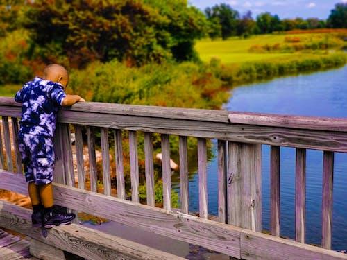 Δωρεάν στοκ φωτογραφιών με african american boy, forest park, αγριολούλουδα, γέφυρες