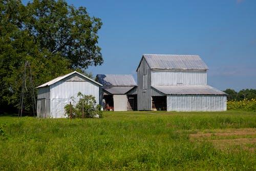 Бесплатное стоковое фото с agbiopix, амбары, архитектура, деревенский