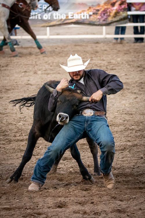 Man in Black Jacket and Blue Denim Jeans Wearing White Cowboy Hat Riding Black Horse during