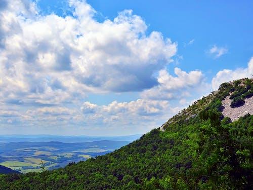 Ingyenes stockfotó domb, ég, fák, felhők témában