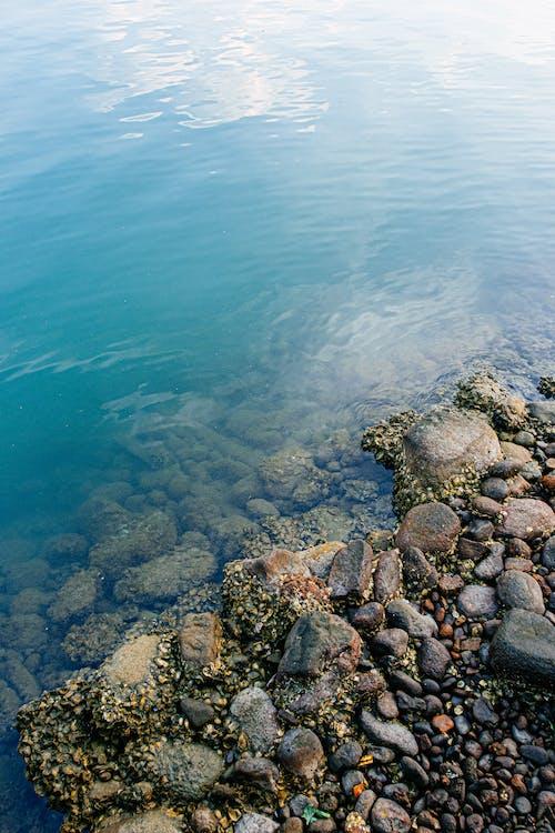 Ingyenes stockfotó nap, nyár, óceán, rock témában