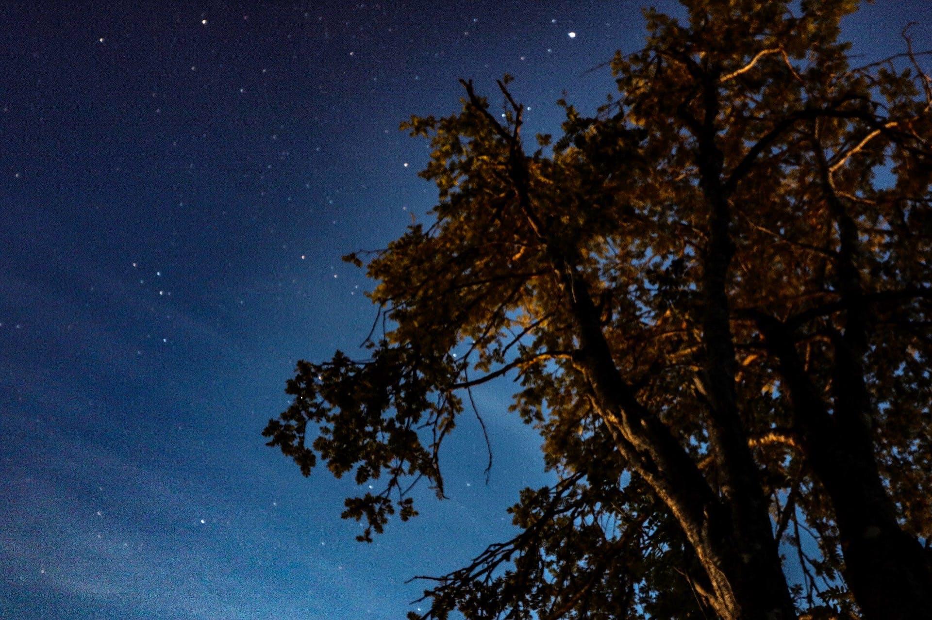 Free stock photo of dark, milky way, nature, stars