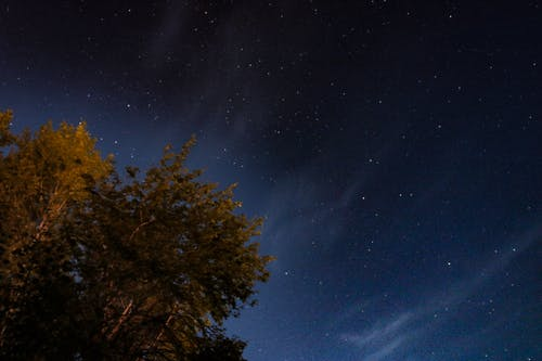 スウェーデン, ダーク, 天の川, 星の無料の写真素材