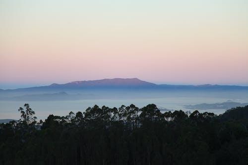 Fotos de stock gratuitas de amanecer, arboles, montaña
