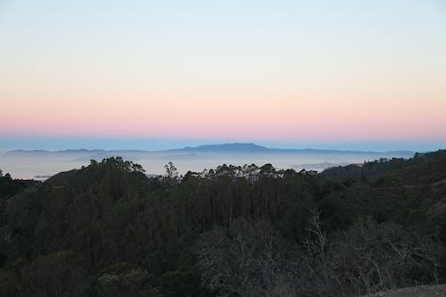 Fotos de stock gratuitas de amanecer, arboles, paisaje