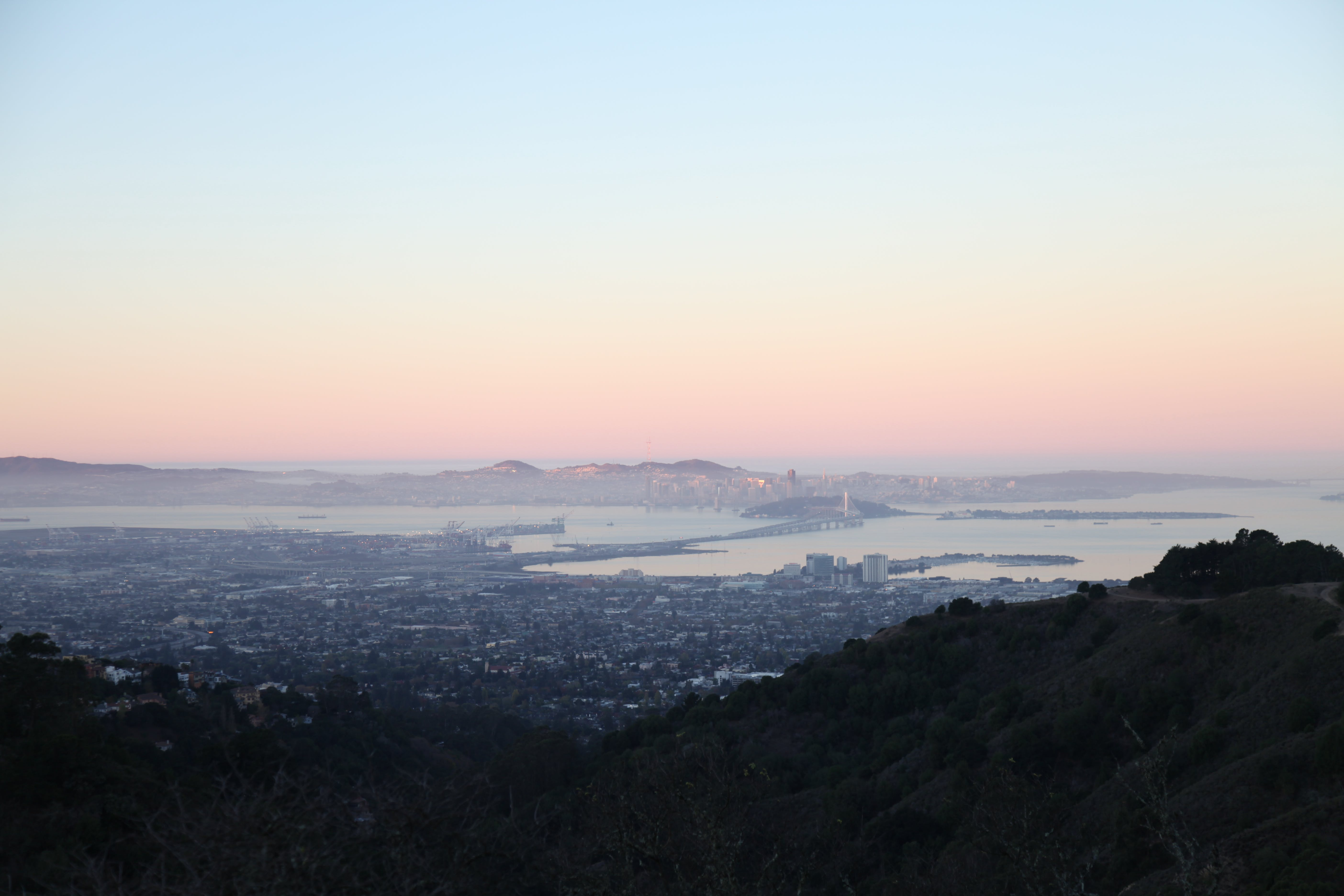Free stock photo of dawn, trees, mountain