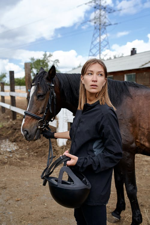 Woman with dark bay horse in paddock