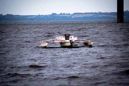 Foto profissional grátis de água, barco, conhecimento