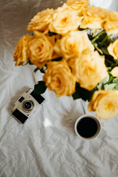 Black and Silver Camera Beside Yellow Roses