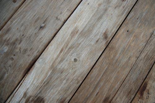 Immagine gratuita di albero, asse, astratto, carpenteria