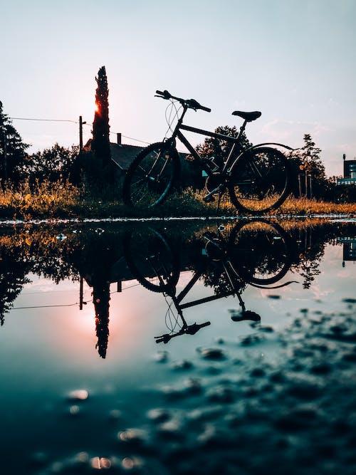 Black Bicycle on Brown Wooden Dock