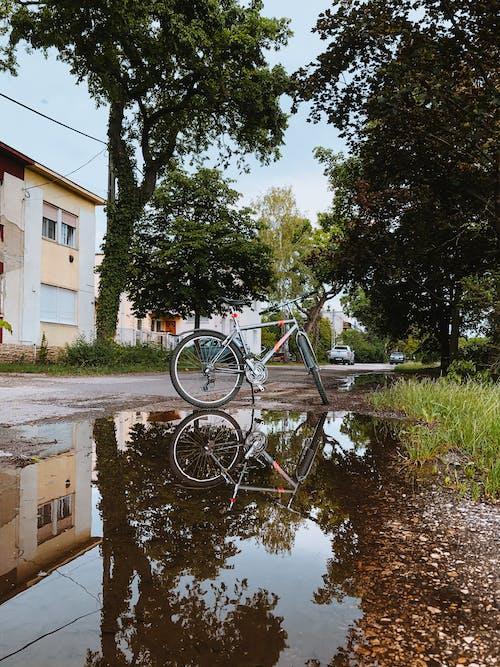 Free stock photo of autumn, bicycle, bike, sport