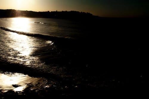 Free stock photo of beach, beach sunset, bondi beach
