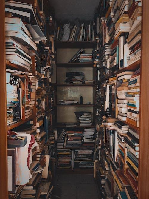 Foto stok gratis Arsitektur, buku-buku, dalam ruangan
