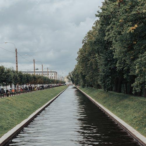 Kostnadsfri bild av bro, falla, flod, gräs