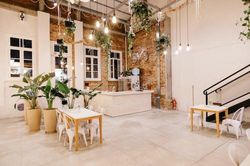 Foto profissional grátis de abajur, apartamento, assento, banco