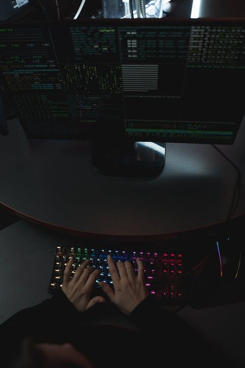 Foto profissional grátis de adulto, ataque cibernético, brincadeiras