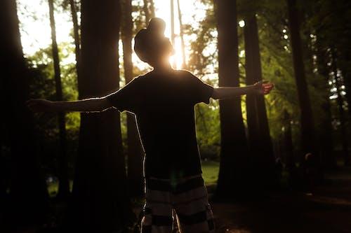 Darmowe zdjęcie z galerii z cień, cieszyć się, dorosły, drewno