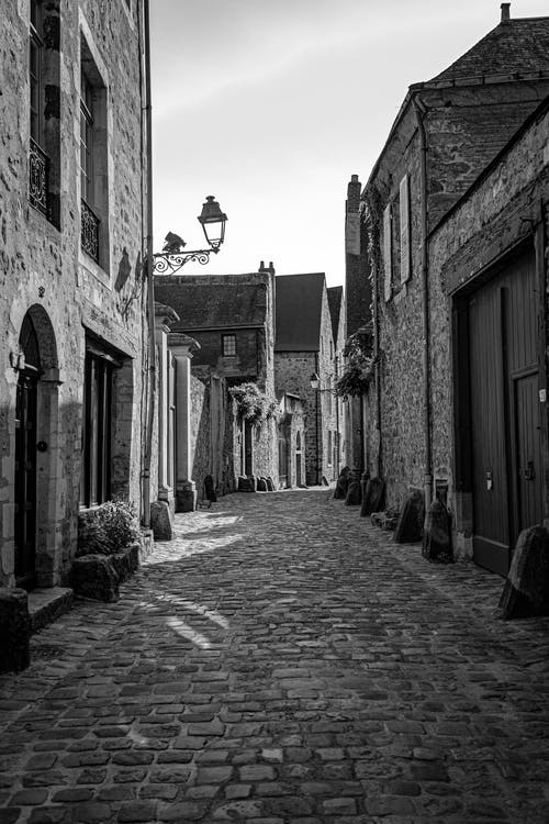 Grayscale Photo of Cobblestone Street