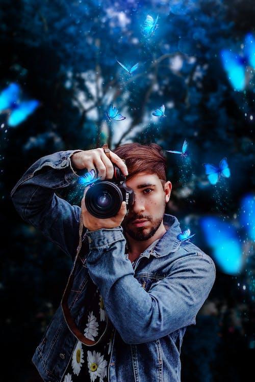 Free stock photo of blue, butterfly, magic, nikon camera