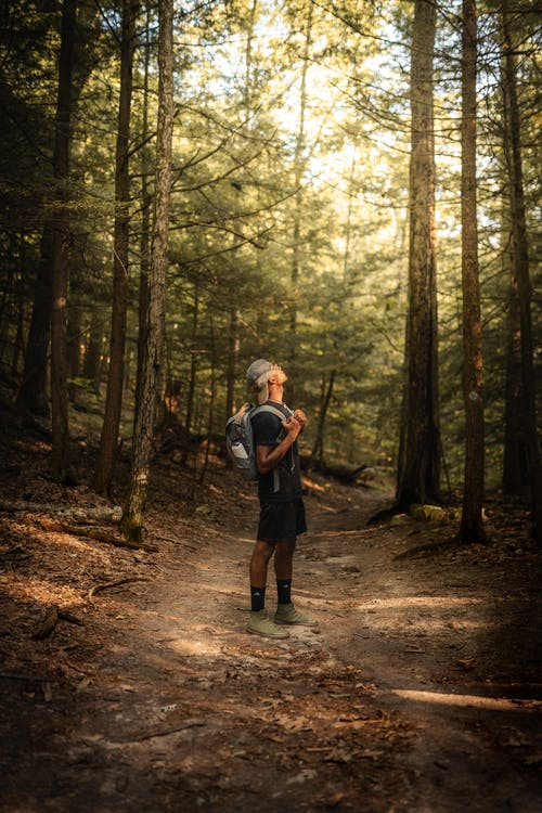A Man Hiking in the Middle of the Forest