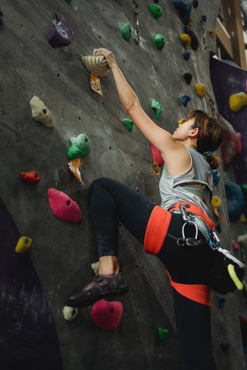 From below back view fit female wearing activewear in belay climbing stiff wall with holders and looking up in contemporary sports center