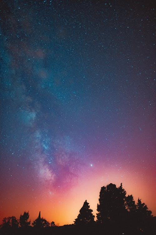 Breathtaking scenery of plenty luminous stars glowing on dark night sky above lush summer trees silhouettes in tranquil countryside