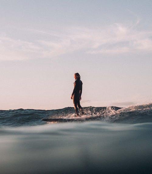 Photos gratuites de action, aube, australie, bord de mer