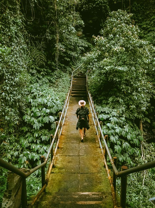 Unrecognizable person walking on mossy bridge in rainforest