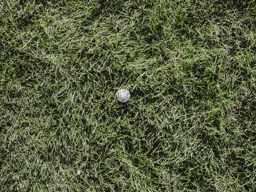 White Round Ball on Green Grass Field
