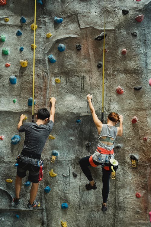 Back view of anonymous male and female climbers in sportswear and sit harness hanging on belay while ascending wall in bouldering center