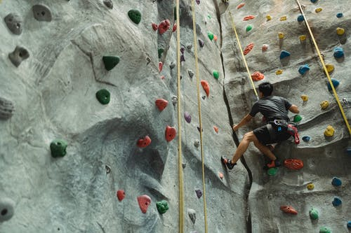Unrecognizable mountaineer climbing wall with grips during workout