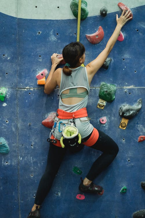 Back view of unrecognizable slim female mountaineer in sportswear with harness climbing artificial rock with grips
