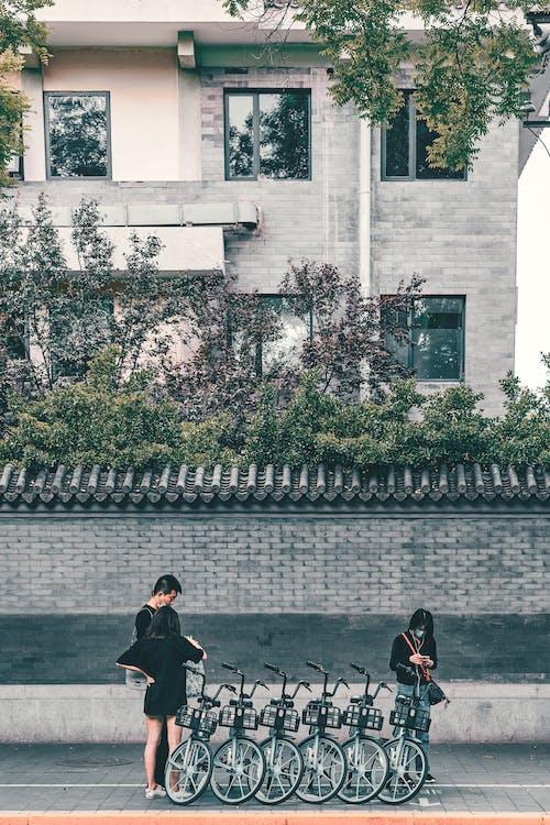 Бесплатное стоковое фото с активный отдых, архитектура, Взрослый, город