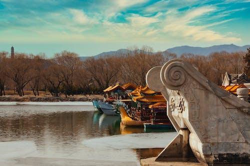 Безкоштовне стокове фото на тему «відображення, вода, Деревина, Захід сонця»