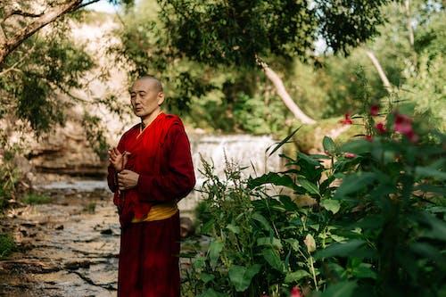 Foto profissional grátis de ao ar livre, Asiático, budismo