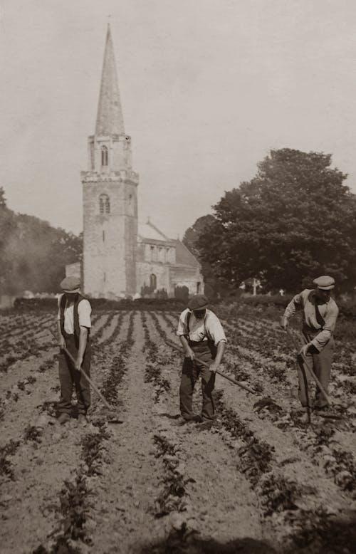Grayscale Photo of Three Men Plowing Field