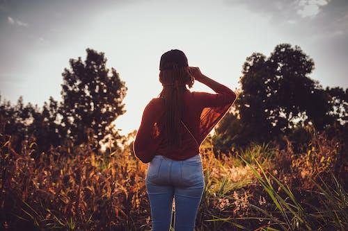 Foto d'estoc gratuïta de a l'aire lliure, alba, alba primerenca, amor